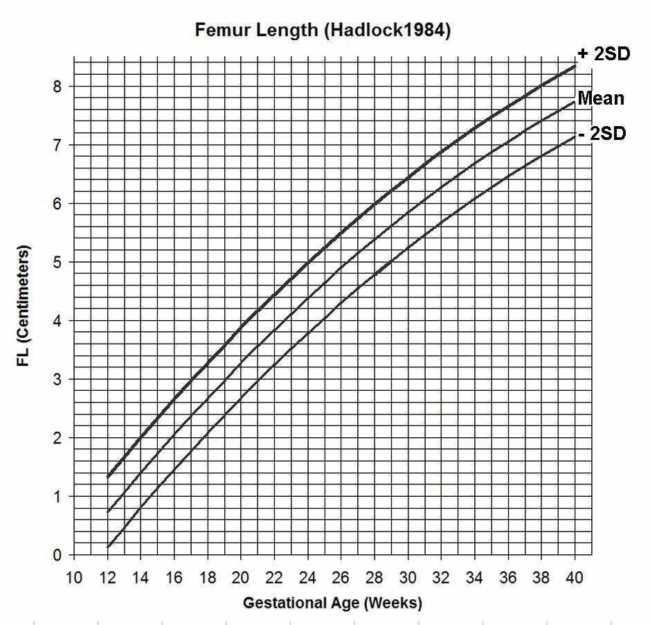 Estimation of fetal weight geenschuldenfo Image collections